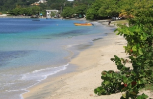 Tyrrel Bay, Carriacou