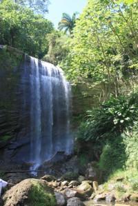 Royal Mount Carmel Waterfall