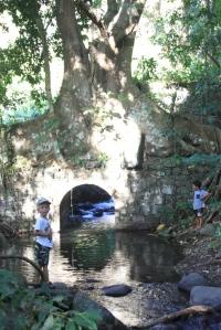 På gåtur til en liten naturpark på St Vincent